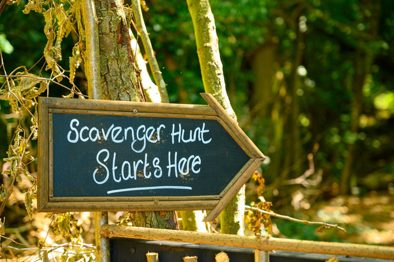 starting point for summer activities scavenger hunt